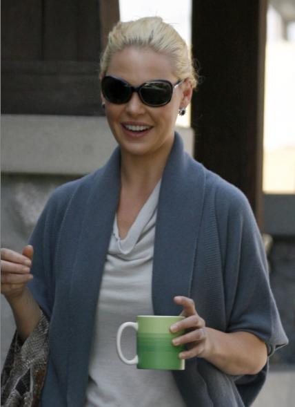 American Actress Katherine Heigl. Berry reportedly dropped out of the film ...